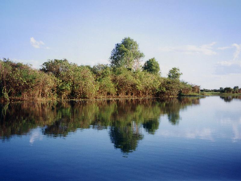 カカドゥ国立公園の画像 p1_29